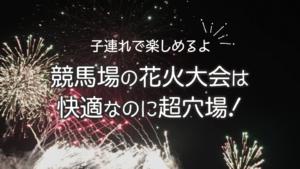 府中東京競馬場花火大会!2020年はいつ?開催は7月の日曜日!?
